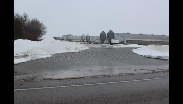 Hog confinements at Harold Ver Steeg's farm east of Hardwick became an island Thursday morning, March 14, as blocked culverts diverted water over the driveways.