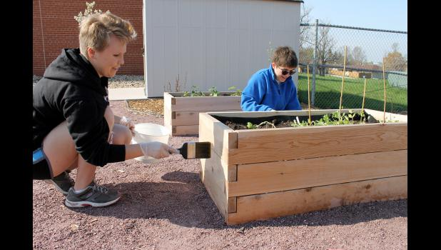 Seniors Monaya Hustoft (left) and Allison Schandelmeier apply clear stain to the raised garden beds in the outdoor classroom located near the Luverne Elementary School.