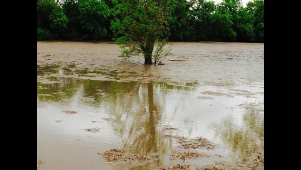 Some areas by Hills received 3 inches of rain Sunday.