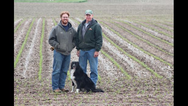 Geff Fitzer (right) with his son, Conner, are pictured Monday in a strip-tilled field that shows new corn coming up amidst last year's bean stubble. With strip-tilling, only the planted part of the row is disturbed.