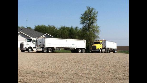A team of volunteers organized by Larry Smith spent May 13 loading and unloading dozens of semi-trailer loads of grain, emptying all the storage bins on the Hup family farm south of Luverne.