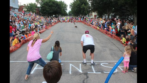 Crowds line racetrack of the 2015 wiener dog races as part of Luverne's 53rd annual Hot Dog Night. There were dozens of entries drawing hundreds of fans from around the tri-state region.