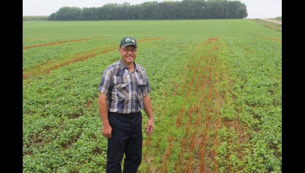 Tom Fick is hosting the Sept. 5 Cover Crop and Soil Health Field Day at his farm west of Luverne. The event will address the advantages of cover crops as they relate to soil health and clean water