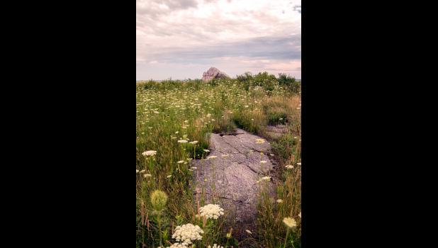 Eagle Rock & Yarrow — Kelly Doyle
