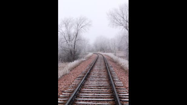 Frosty Tracks — Linsey Duffy