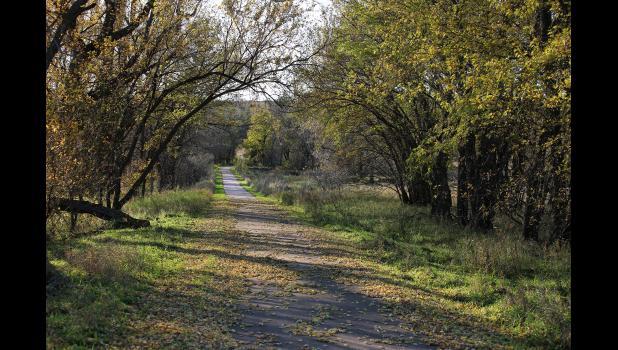 Hidden Trail — Canaan Petersen