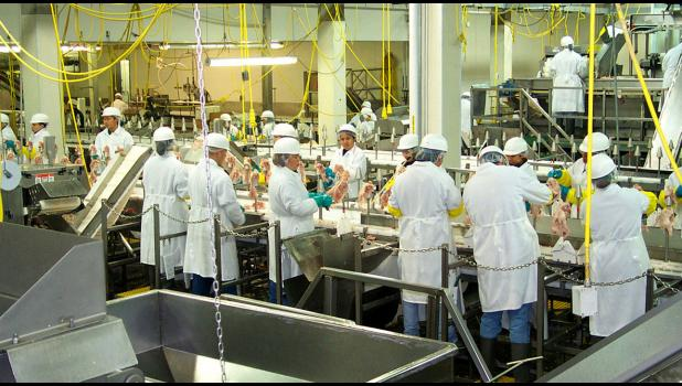 Plant workers process poultry meat in the Luverne Gold'n Plump plant in this 2001 file photo.