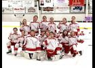 The Luverne 12 and Under girls' hockey team captured the program's first district title over the weekend. Team members include (front, from left) Cheyenne Schutz, Mallory Von Tersch, (middle) Sophie Holmberg, Kamryn Van Batavia, Emma Ramstorf, Anika Boll, Kristyn Skindelien, Zariah Holmgren, (back) Reghan Bork, Mallory Nelson, Paige Sandbulte, Rozilyn Oye, Billi Connell and Brynn Thier.