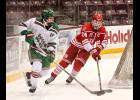 Luverne senior Jesse Reed pokes at a puck on the stick of East Grand Forks defenseman Casey Kallock during a state tournament consolation game Thursday at Mariucci Arena in Minneapolis.