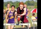 Ellsworth junior Sean Boltjes placed second in the 300-meter hurdles to earn a trip to the state meet in St. Paul during Thursday's Section 3A Track and Field Championships in Montevideo.