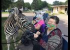 Fran Gibbens enjoys an up-close meeting with Kenya the zebra Friday, Aug. 7, at the Tuff Memorial Home in Hills.