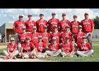 The 2018 Luverne VFW baseball team competed at the state tournament in Brainerd last week. Team members include (sitting, from left) Ethan Beyer, Quinn Buss, Trevor Halverson, Riley Anderson, Jamie Palmquist, John Miller, (kneeling) Hunter Baker, Ben Jarchow, Bailey Cowell, Cade Wenninger, Shaid Shearer, Jacob Von Tersch, (back) Jaden Knips, Noah Herman, Nathan Nekali, Isaiah Bartels, Colby Crabtree, Tyler Roberts and coach Mike Wenninger.