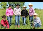 Six Rock County 4-H'ers compete at the Minnesota State 4-H Horse Show Sept. 13-16 in St. Paul. Pictured are Gavin Johnson (left), Lizzie Chapa, Kallie Chapa, Kennedy Safar, Joni Vander Beek and Ayden Bonnett.