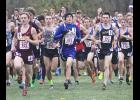 Adrian senior Brady Henning placed 61st in a 166-runner field at the state cross country meet in Northfield Saturday.