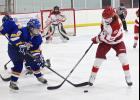 Luverne junior Maddie Dinger competes for the puck with a Waseca skater during Saturday's hockey game at the Blue Mound Ice Arena.
